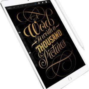 Apple 10.5-inch iPad Pro A10X Chip (2017 Model)